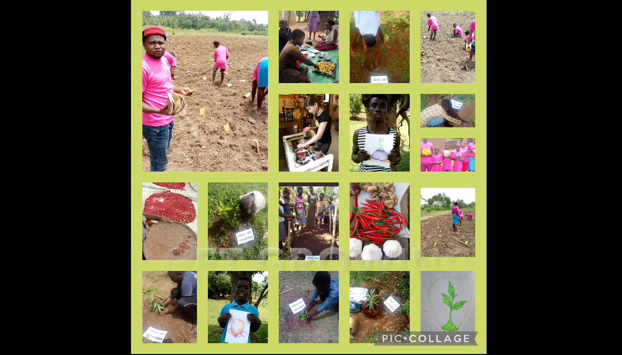 watch VLES Canada/Uganda Energy Diet Students video